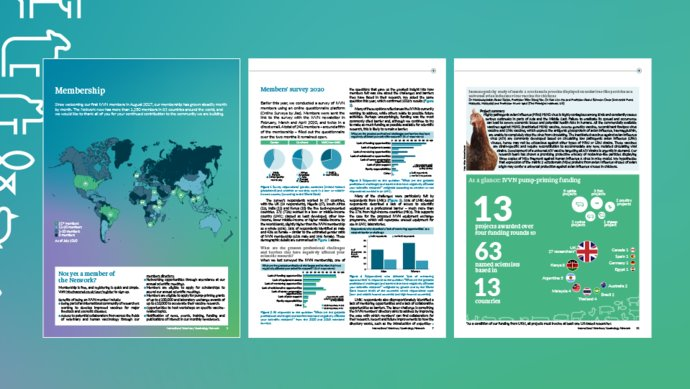 Pages from the IVVN Annual Report