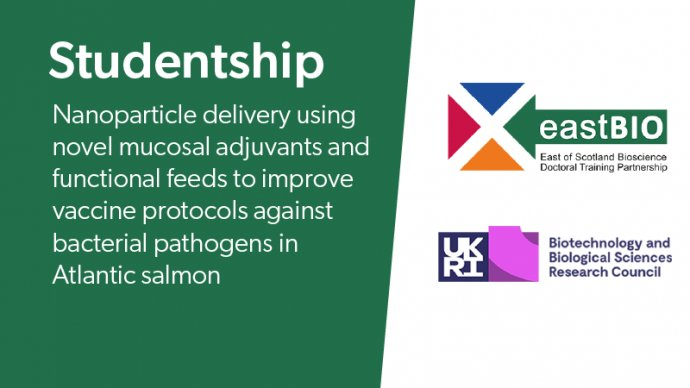 Studentship: Nanoparticle delivery using novel mucosal adjuvants and functional feeds to improve vaccine protocols against bacterial pathogens in Atlantic salmon