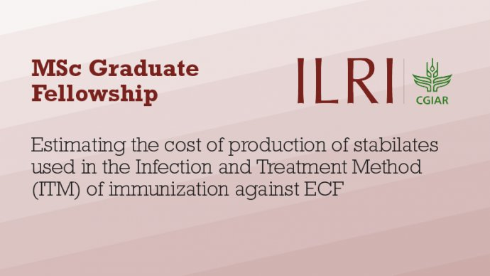 Text: Estimating the cost of production of stabilates used in the Infection and Treatment Method (ITM) of immunization against ECF
